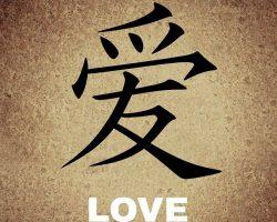 เรียนภาษาจีนเบื้องต้นด้วยตนเอง
